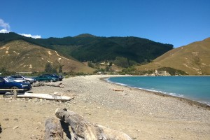 Nelson Cable Bay