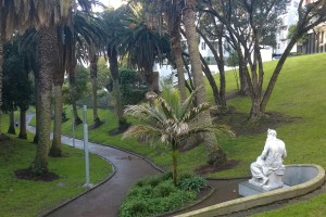 Park in Auckland